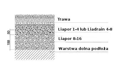 dwuwarstwowy system wegetacyjny