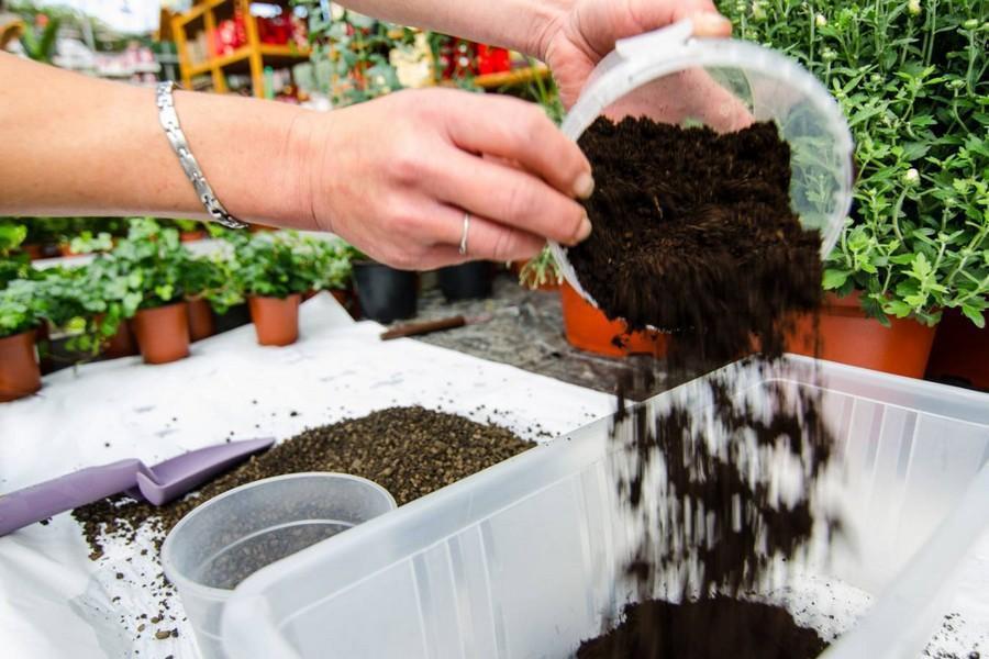 Liaflor - kruszywo do celów ogrodniczych 2